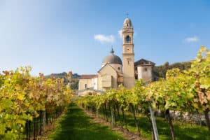 Amarone Wine Made in Veneto, Valpolicella, Italy | What is Amarone Wine? | Winetraveler.com