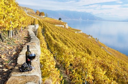 The Swiss Wine Region of Lavaux in Vaud, Switzerland | Wines of Switzerland - Lavaux, Vaud