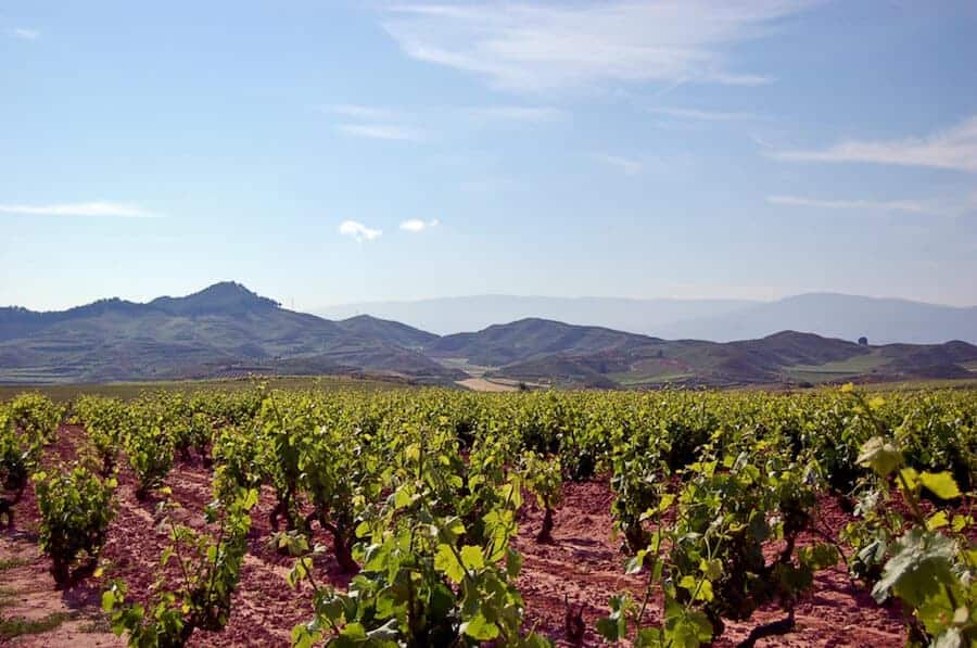 What's the Difference Between Rioja Spain's Three Sub-Regions