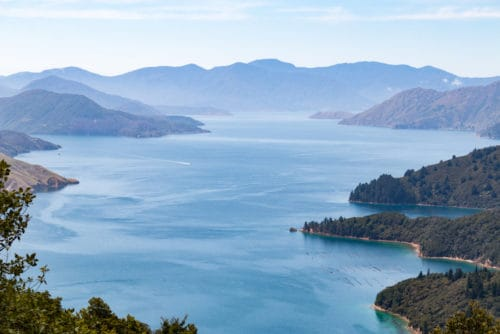 New Zealand's Premier Wine Region to Visit - Marlborough | Winetraveler.com