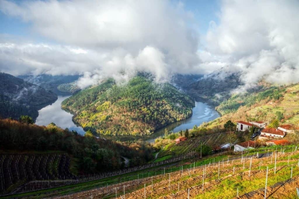 New Wine Recommendations for 2019 - Albarino Galicia Spain | Winetraveler.com