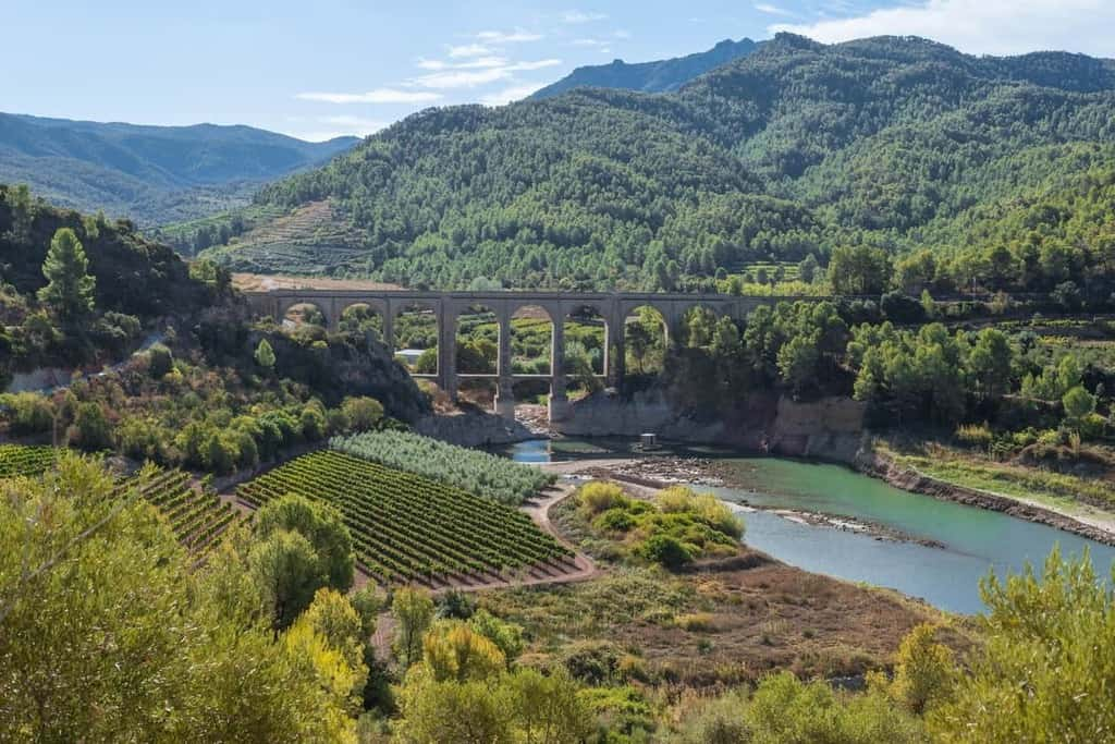 COVID-19 | Measures implemented in Portugal