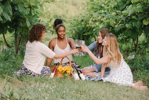 Learn About Wineries to visit near Washington DC in Virginia