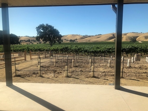 Cass Winery in East Paso Robles