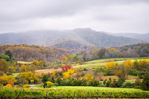 Best NC Wineries in the Mountains to Visit